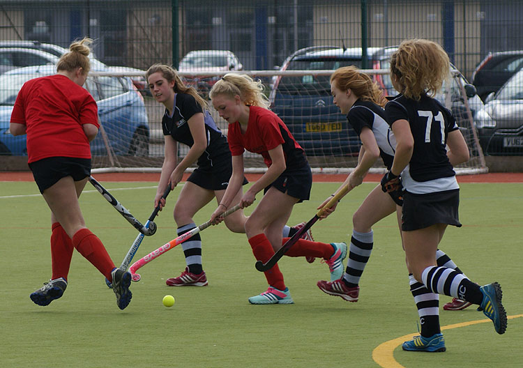 Gallery Thornbury Hockey Club